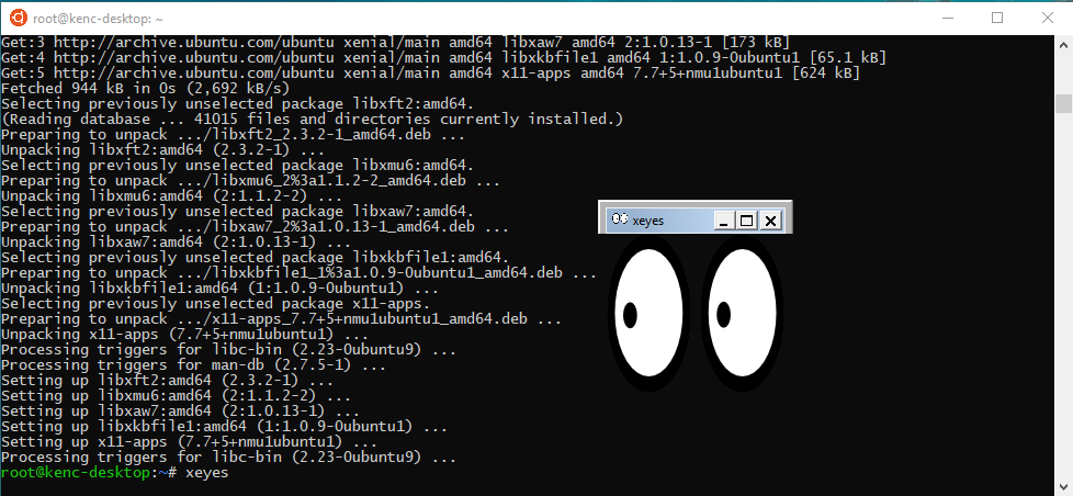 xeyes running graphically in Windows, under Linux